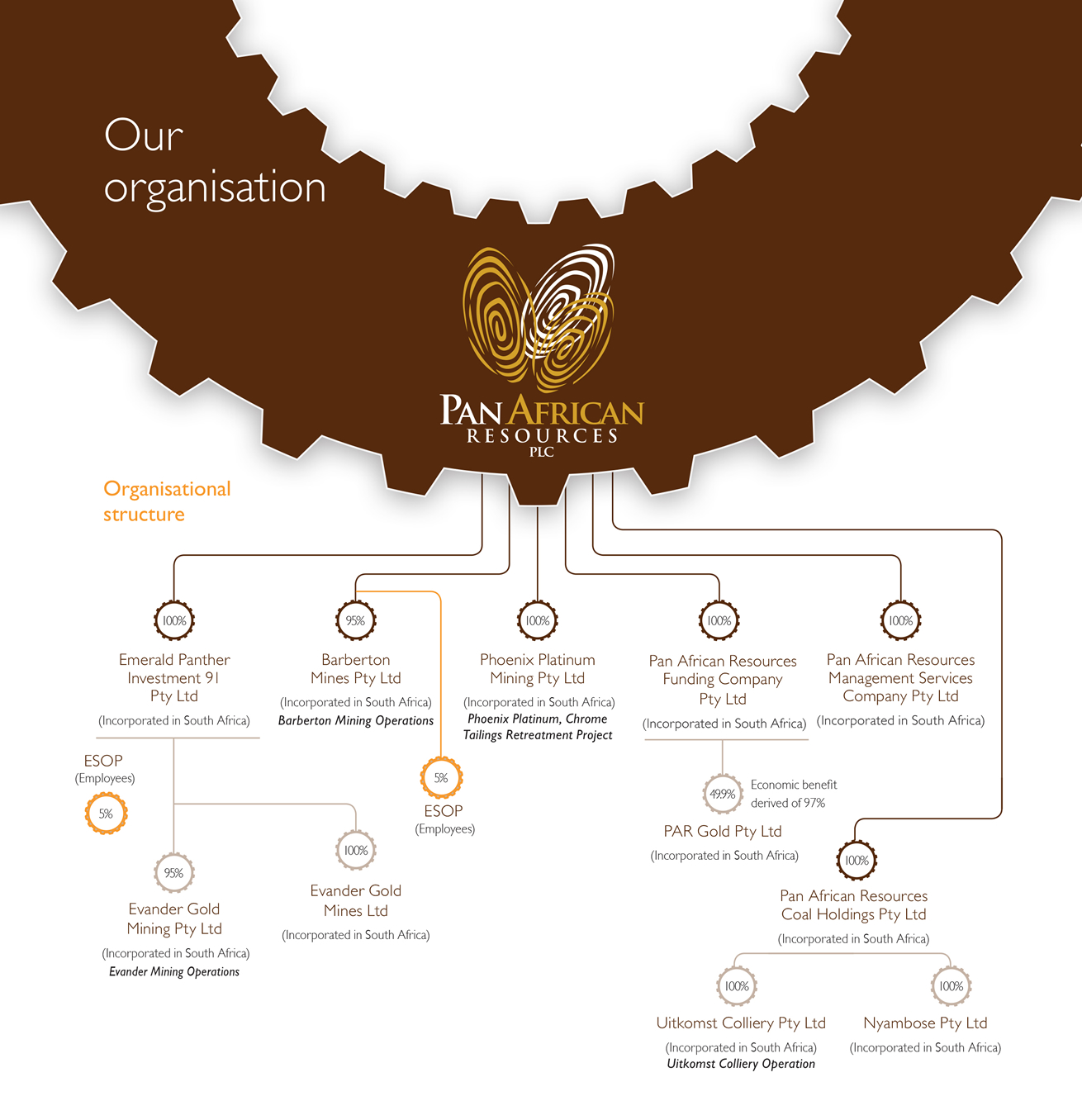 company-structure
